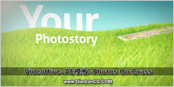 VideoHive-AE模板-Photos On Grass.jpg