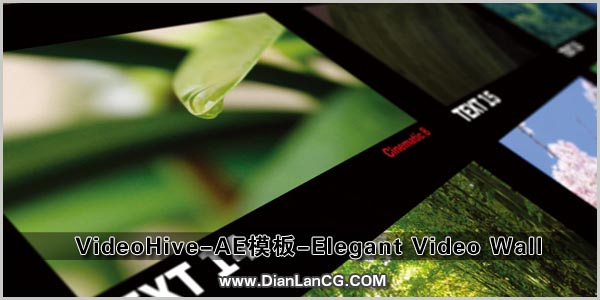 VideoHive-AE模板-Elegant Video Wall.jpg